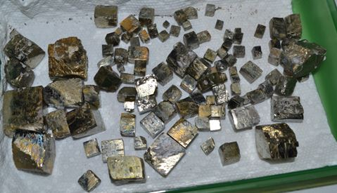 "Pyrite cubes of all sizes (largest are 2"" on a side) from one day of collecting in Glendon,  NC:  Fool's gold from the collection of Bill Lesniak.  No implication intended."