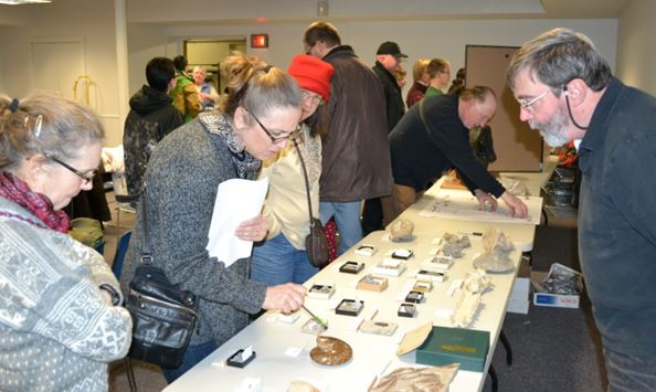 Our March meeting with fossil demos was a hit for Middle School students and club members alike.  Here, the sutures on one of Dan Krisher's cephalopods are being admired.  Mike Grenier has a crowd with the dinosaurs in the background.