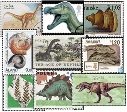 How many of these prehistoric creatures can you identiify?