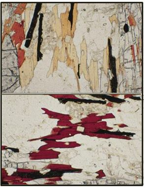 Two views of the same thin section under plane polarized light, but rotated 90 degrees.  The brown grains are biotite and show strong pleochroism.  The clear minerals in between are a combination of quartz and plagioclase, neither of which exhibits pleochroism.