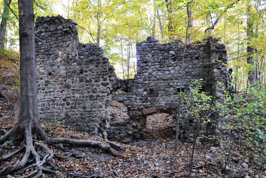 The old stone walls from what once must have been a multi-room facility of some sort stood stoically amongst the younger deciduous trees growing around and even within the walls of the ruins.