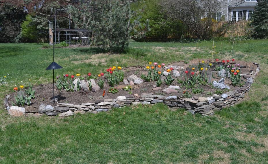 garden May1