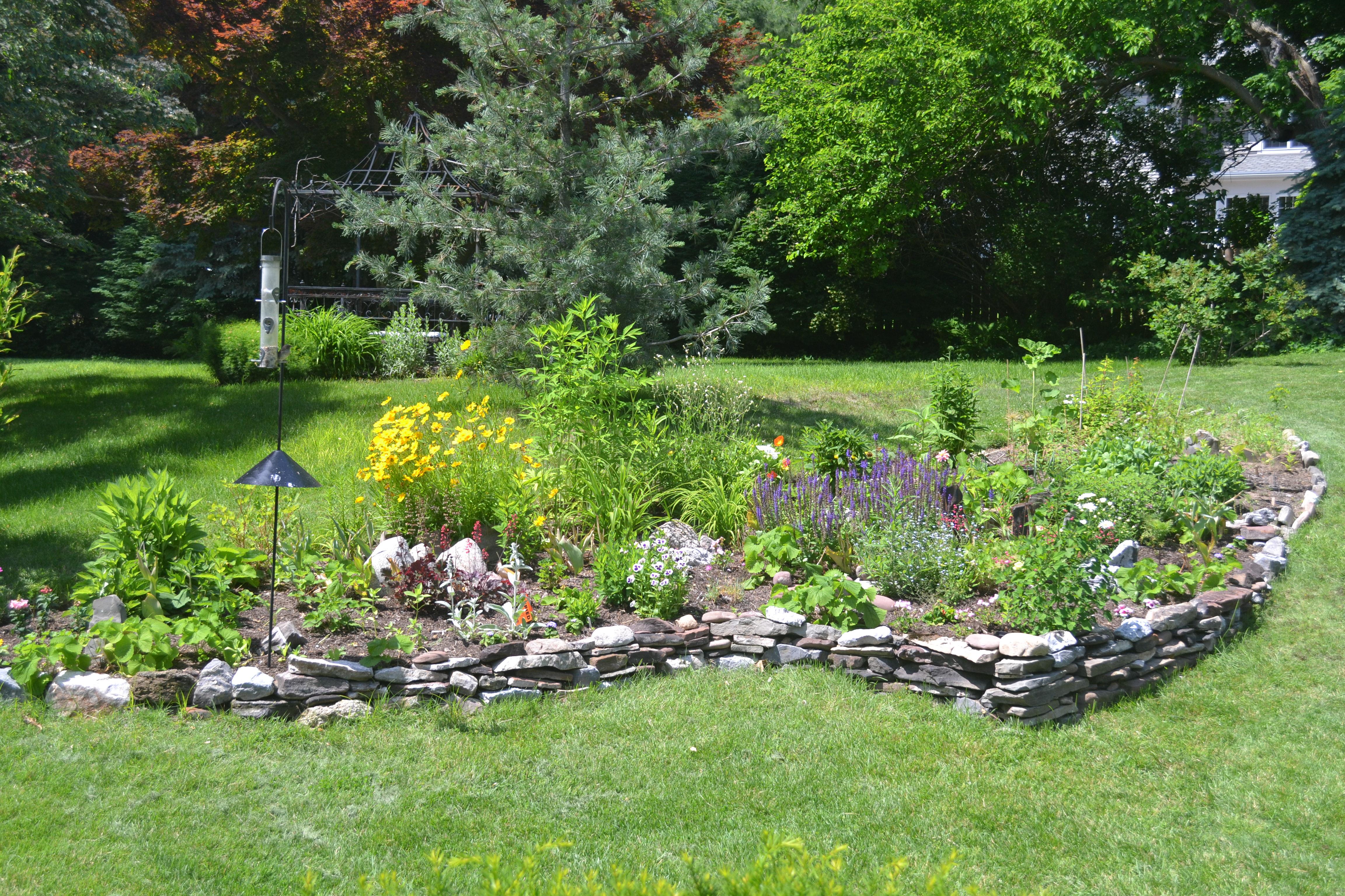 garden from patio June 21 2013