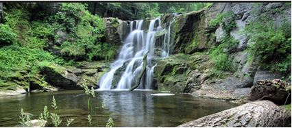 The Upper Falls in Kashong Glen is capped by the Menteth Formation of the Moscow Formation.  Fossils can be found in both the Deep Run Member behind and beneath the falls and in the Kashong Member above the falls.