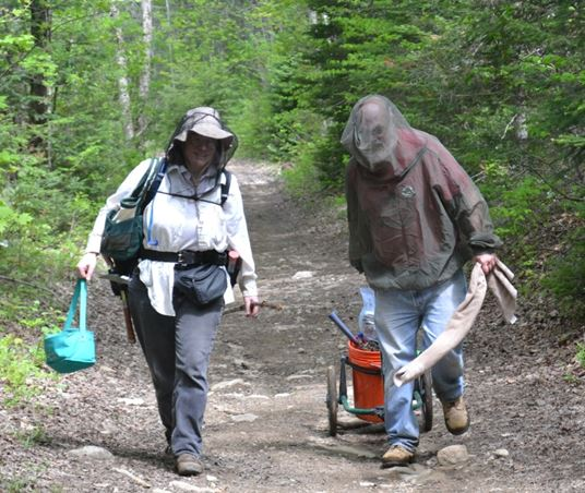 Debbie Errico and Dick Phillips fend off the mosquitoes and black flies while they trek out of Silver Crater.