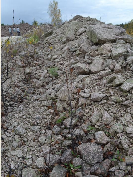 In addition to the skarn mineral suite at the location, one of the host rocks is interesting from a lapidary point of view.  This pile of igneous rock is all unakite, a colorful speckled mix of green epidote and pink feldspar that can be cut and polished.