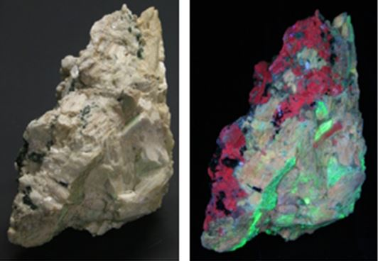"""This 4"""" high piece is from my first trip to the site.  On the right is a plain light photograph.  On the right the same specimen is shown in UVC (253nm) light . The albite fluoresces cherry red, the wollastonite tan and an unidentified coating is bright green."""