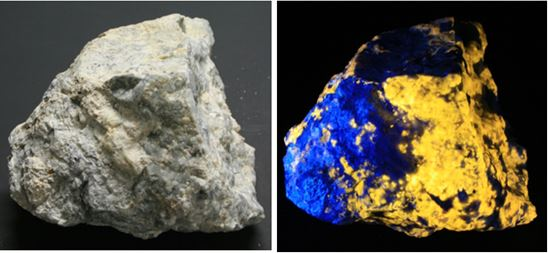 The piece above is shown in room light to the left and long wave on the right.  The main fluorescent responses are from the scapolite (bright yellow/ orange) and the analcime (blue).  The piece is a rough pyramid 8 inches on a side.
