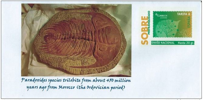Paradoxides is so well known that a fossil from Morocco even found his way onto a Spanish postal card in 2013.