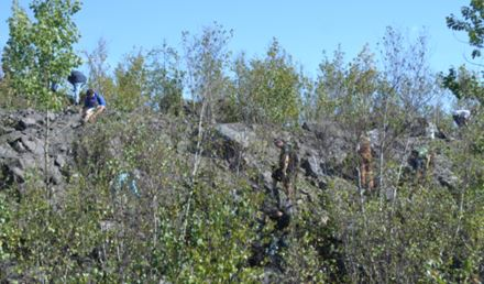 How many collectors can you spot on the Benson Mine dumps?  They are looking for muscovite-bearing pegmatite amongst the sillimanite-magnetite gneiss boulders.