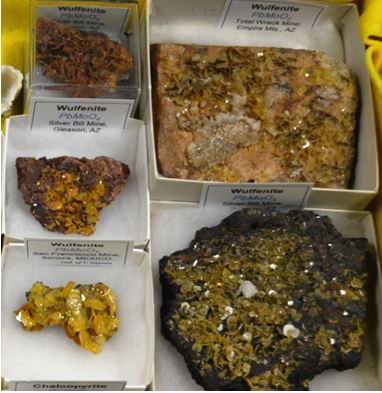 "Four of the five wulfenite specimens I brought to ""the show"" were self collected in Arizona."