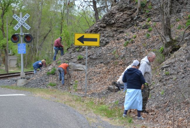The Danville site is a roadcut at a railway crossing:  easy site to find, and easy to collect.