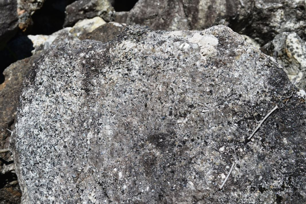 Can you see all the shiny gray graphite speckled through this quartz-rich boulder?